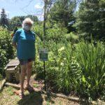 Betsy Manning Rain Garden_07292020_LB (1)